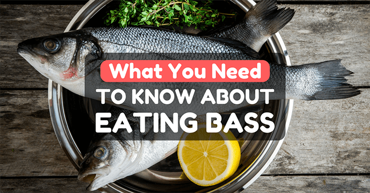 can you eat bass