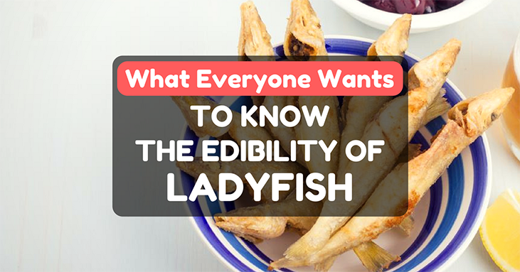 Can You Eat Ladyfish