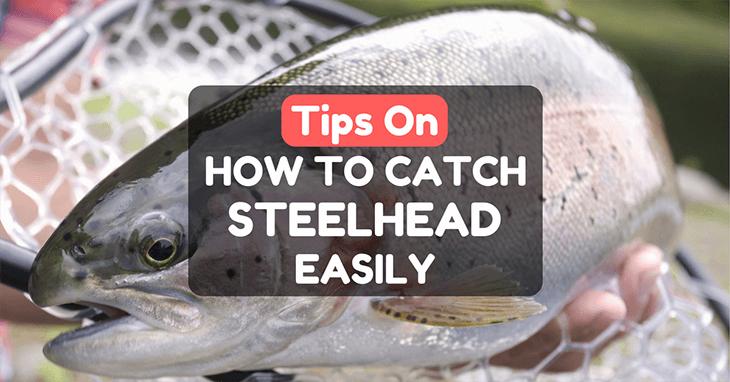 How To Catch Steelhead