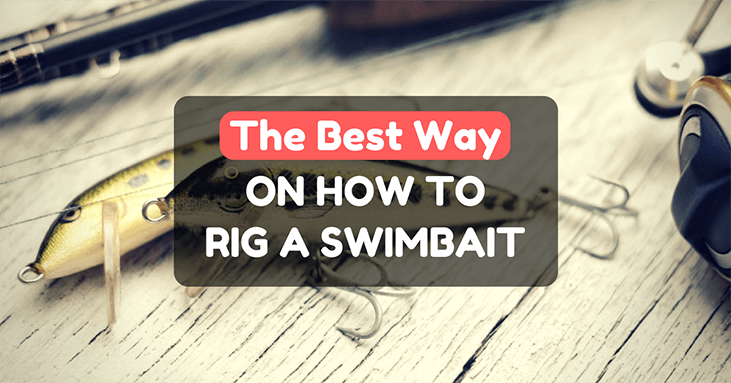 How To Rig A Swimbait