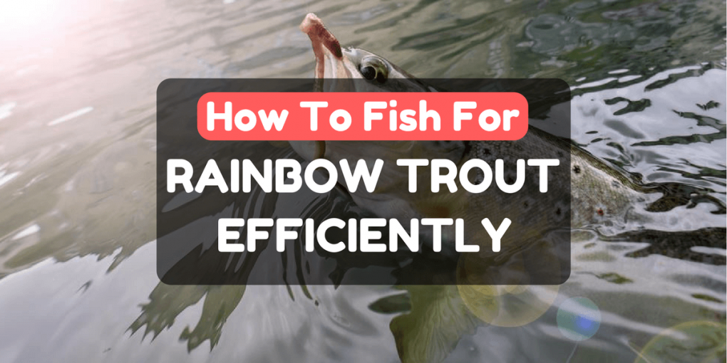 How To Fish For Rainbow Trout