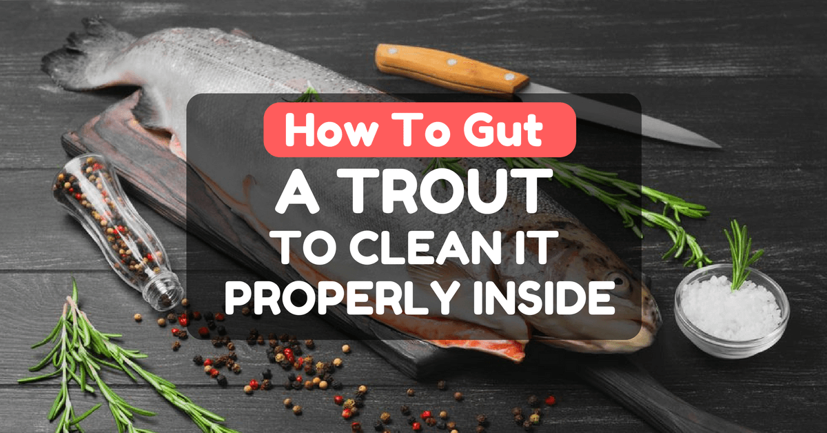 How To Gut a Trout