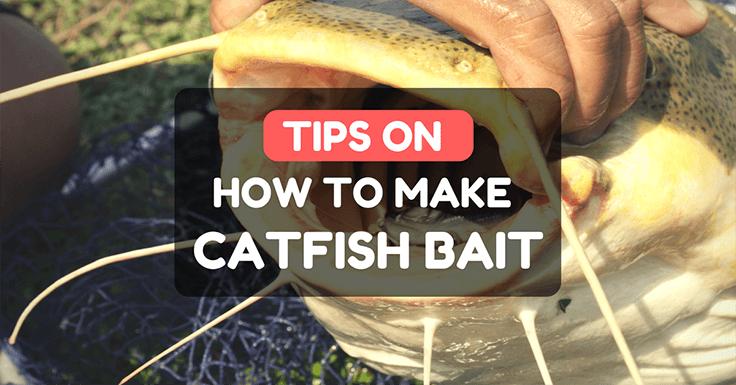 How To Make Catfish Bait