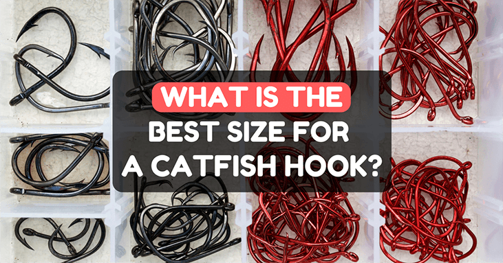 What Size Hook For Catfish