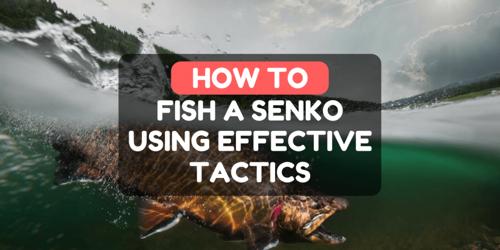 How To Fish A Senko