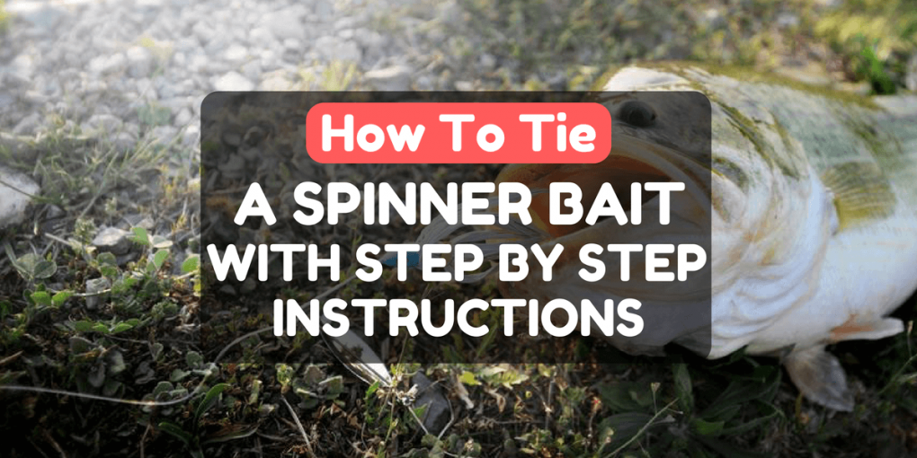 How To Tie A Spinnerbait