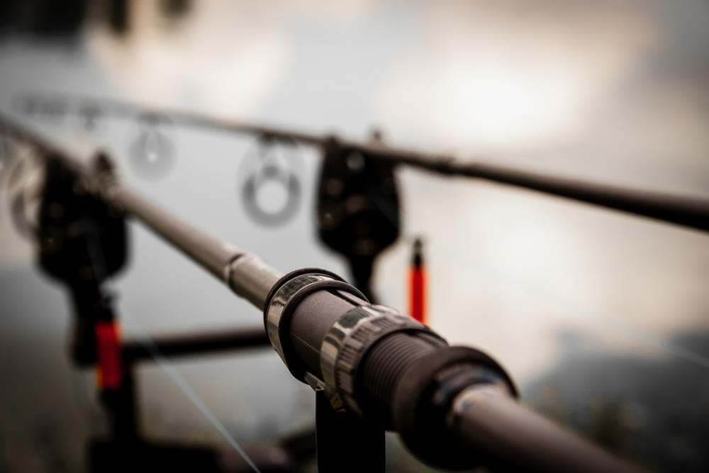 Carp Fishing Rods