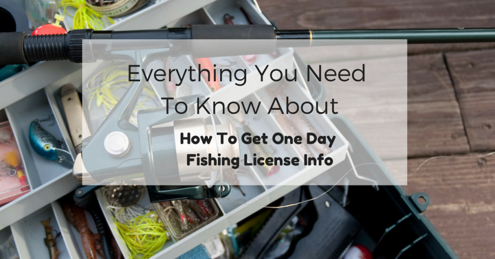 Everything you need to know about how to get one day for Where to get a fishing license